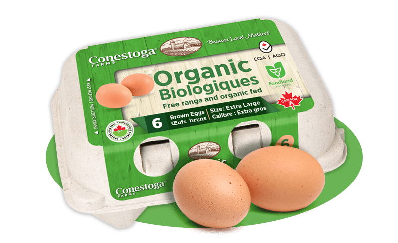 Conestoga Organic Eggs