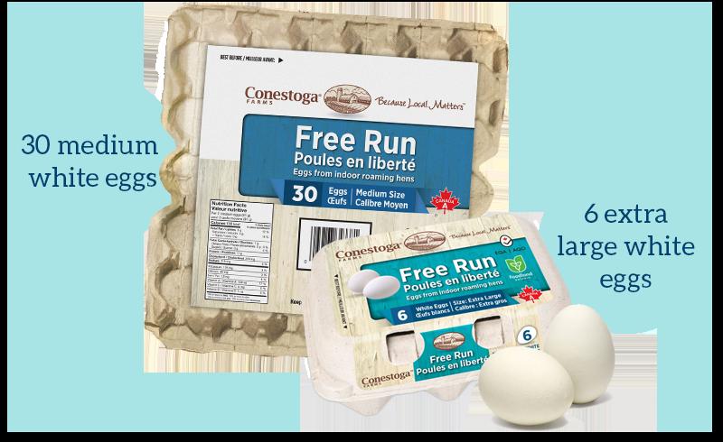 Free Run, From indoor roaming hens