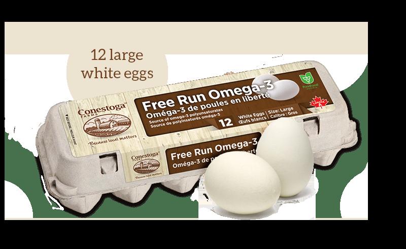 white_free_run_omega3