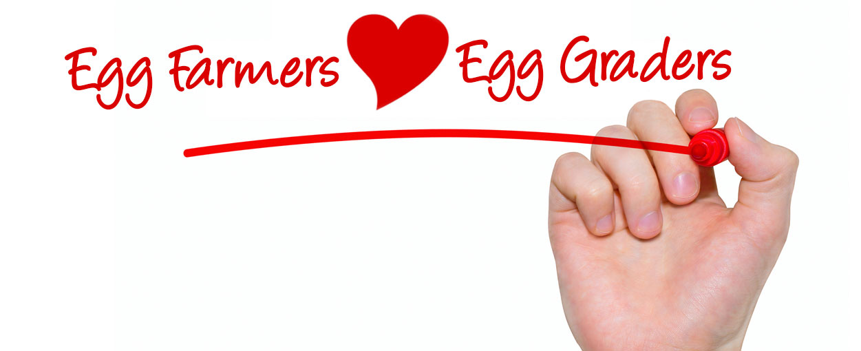 Gray Ridge is one of the largest egg graders in Ontario, working in close partnership with Ontario egg farmers.  Our farmer partners are specially selected for the quality of their eggs and their passion for egg farming.   Explore what we do and how we do it.