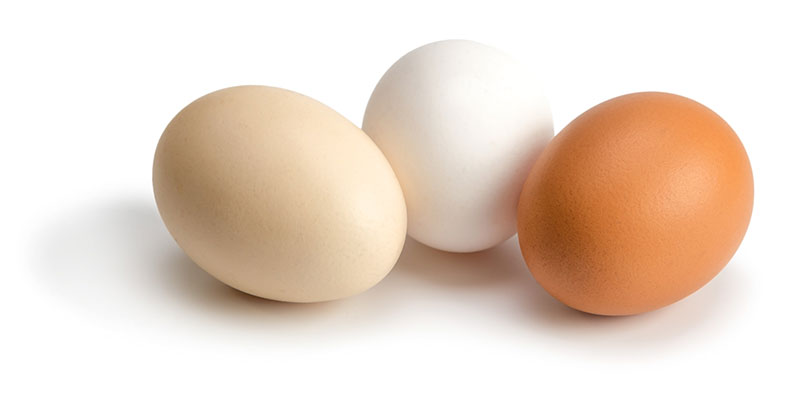 Eggs:  Naturally nutritionally perfect.