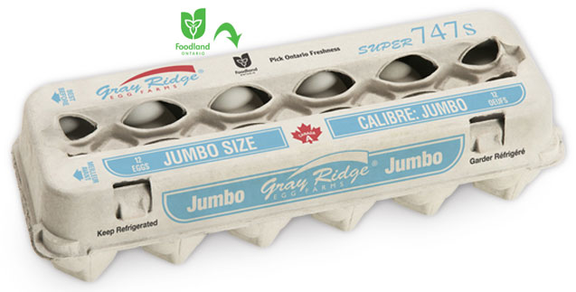Gray Ridge Jumbo White Eggs