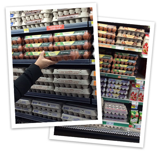 On-shelf merchandising is a science.  Our Sales and Merchandising team can help you optimize your assortment and give you the tools to make your egg section easier for consumers to shop. Get merchandising support.