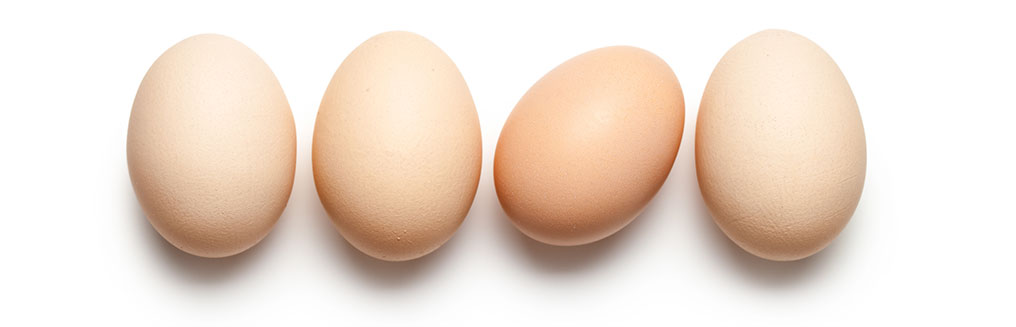 What type of eggs are you looking for?