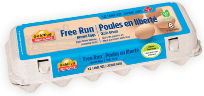 Free Run Large Brown Eggs